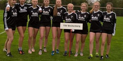 Deutsche Faustball-Meisterschaft 2o16 der weiblichen U16 in Wangersen